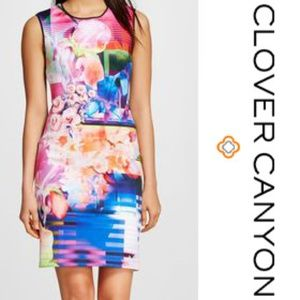 Dream Daily Clover Canyon Floral Multicolor Dress